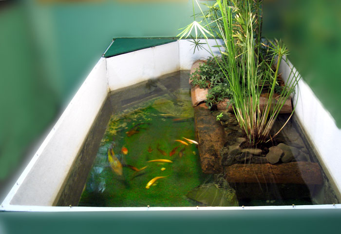 Po fishing center acquario del po for Acquario aperto prezzi